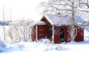 różne rodzaje saun